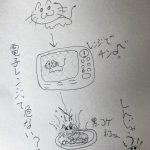 【ネコはレンジでチンしちゃダメ】電子レンジってヤバイ?